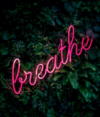 breathe neon sign on grass wall